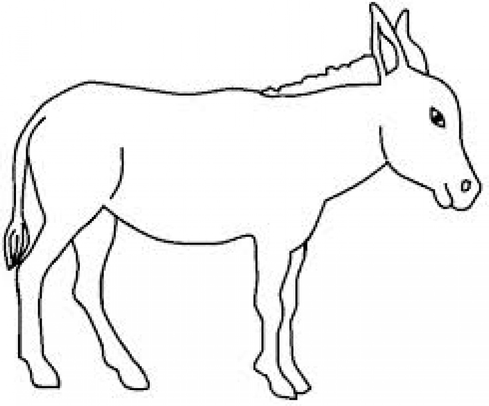how to draw a mule fpencil how to draw donkey for kids step by step how draw mule to a