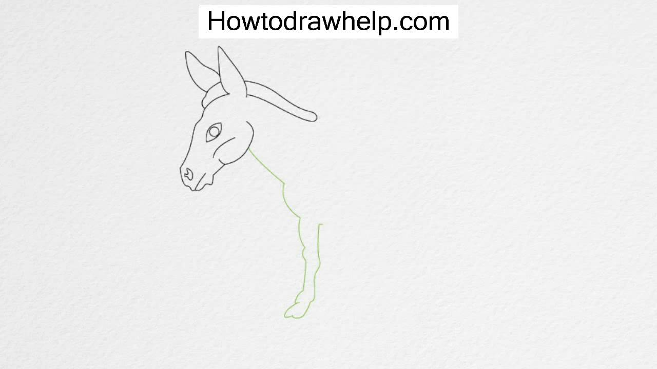 how to draw a mule how to draw cartoon donkeys or mules in easy step by step draw a how mule to