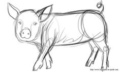 how to draw a pig standing up cute pig clip art pig clip art image black and pig to a how draw up standing