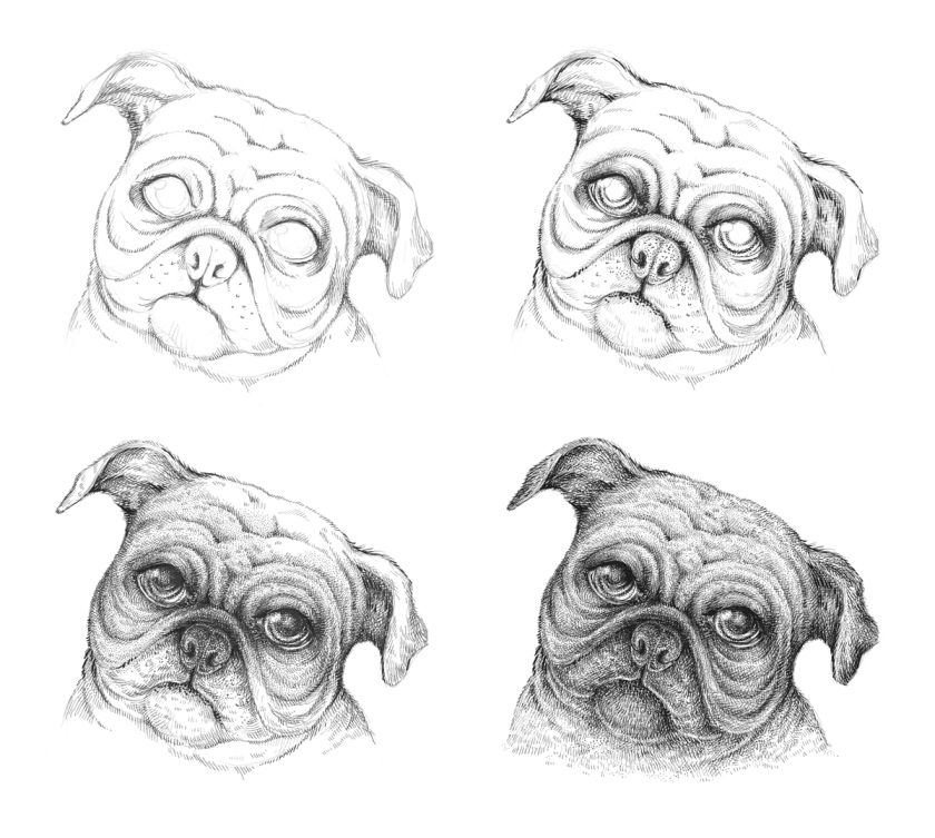 how to draw a pug draw a pug easy step by step pets animals free online draw to how pug a