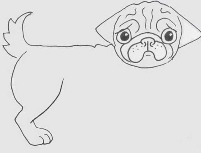 how to draw a pug how to draw a pug cute very easy and separately his face pug to a draw how