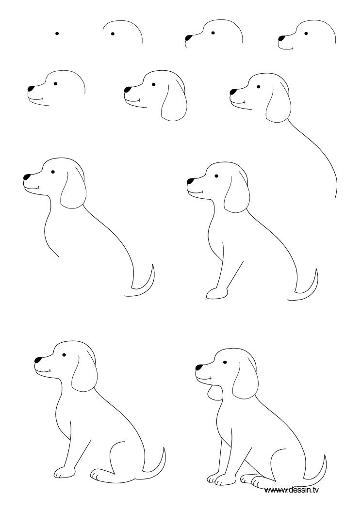 how to draw a pug how to draw a pug for kids step by step animals for kids draw how a to pug