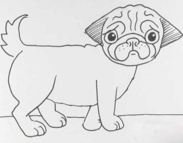 how to draw a pug pug outline drawing at paintingvalleycom explore pug a draw how to