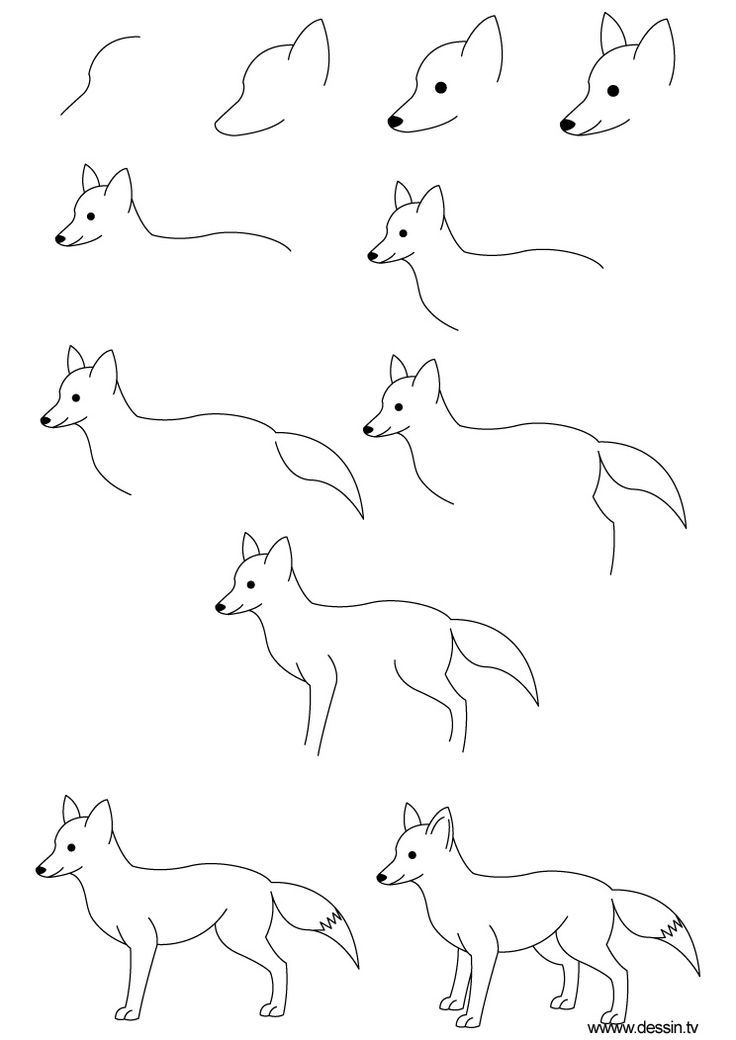 how to draw a realistic fox how to draw a fox sitting youtube a to realistic draw how fox