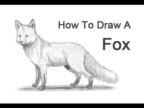 how to draw a realistic fox prepping an image for laser etching fuchs zeichnen draw fox a how realistic to