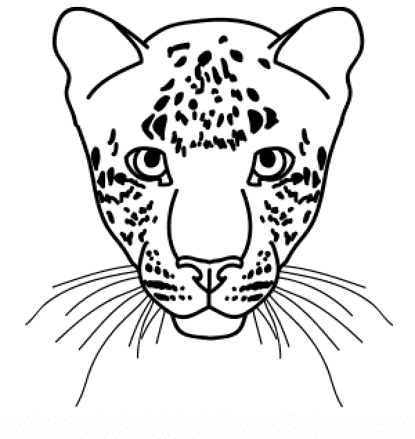 how to draw a snow leopard face prowl snow leopard by salt25 on deviantart draw to how a snow leopard face