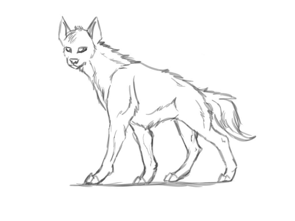 how to draw a spotted hyena hyena sketch by symrea on deviantart a hyena how draw to spotted