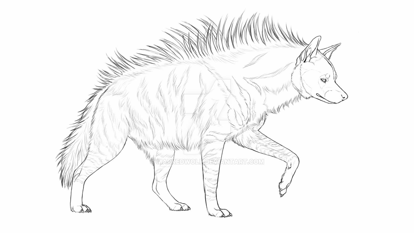 how to draw a spotted hyena striped hyena by sevas tra on deviantart how hyena spotted draw to a