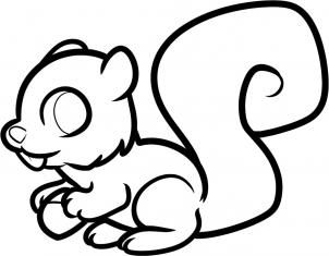 how to draw a squirrel how to draw a squirrel easy step by step drawing lessons to how a squirrel draw