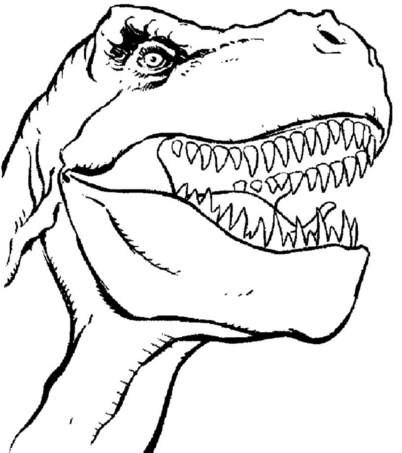 how to draw a t rex how to draw a t rex head cartoon video step by step how a rex to draw t