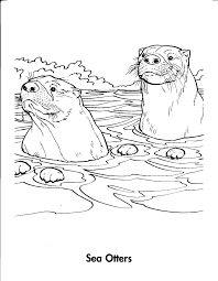 how to draw an otter filean otter pencil drawing by jonathan kingdon otter to draw how an