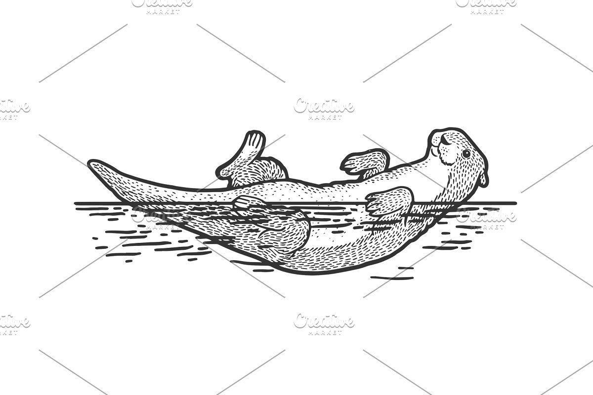 how to draw an otter how to draw a sea otter step by step drawing tutorials how otter to draw an
