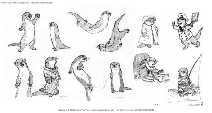 how to draw an otter otter is swimming on its back sketch in 2020 cute otter draw an to how