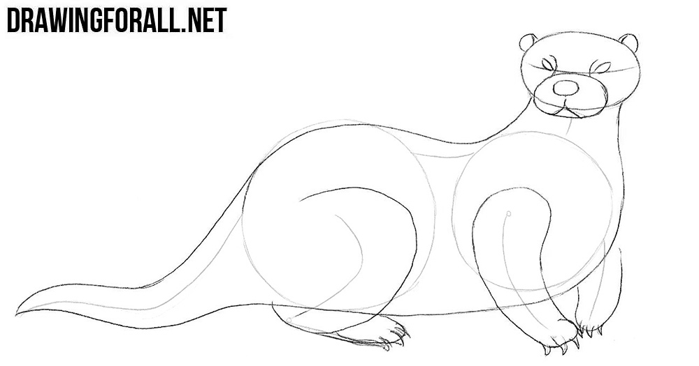 how to draw an otter two otters laying on their backs one is speaking drawing otter an how draw to