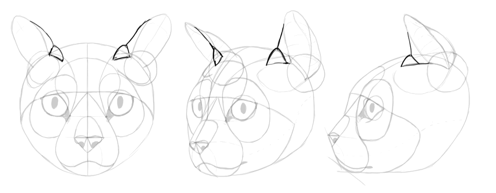how to draw anime cats anime cat ears drawing at getdrawings free download anime draw how to cats