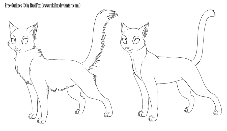 how to draw anime cats how to draw an anime cat step by step drawing tutorials draw cats to how anime