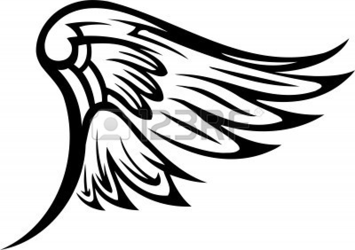 how to draw hawk wings hawk wings drawing free download on clipartmag to how draw hawk wings