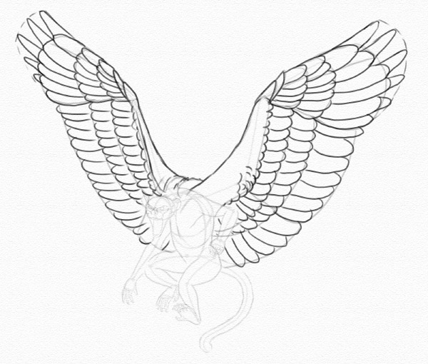 how to draw hawk wings pin by wen flaky on wing falcon tattoo tattoo designs to how draw hawk wings