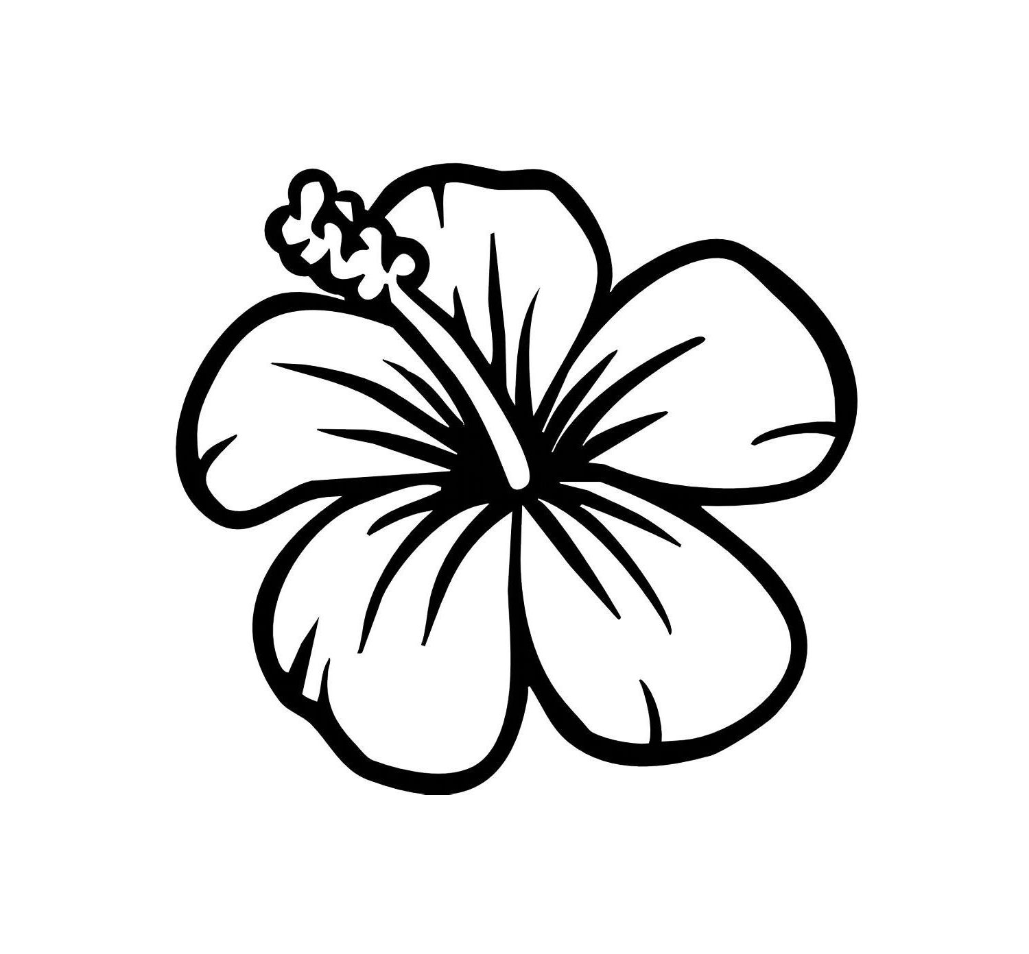 how to draw hibiscus 20 views with images easy flower drawings hawaiian draw how hibiscus to