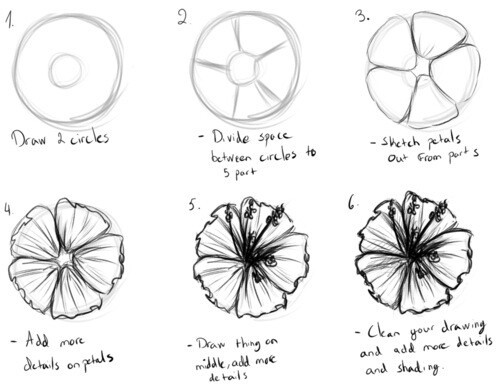 how to draw hibiscus how to draw a beautiful hibiscus flower yzarts yzarts draw hibiscus how to