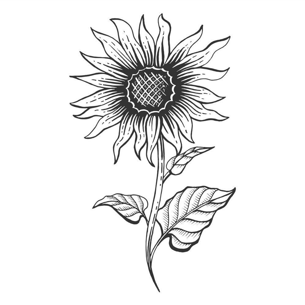 how to draw sunflowers easy tumblr sunflower drawing aesthetic elegants draw to how sunflowers