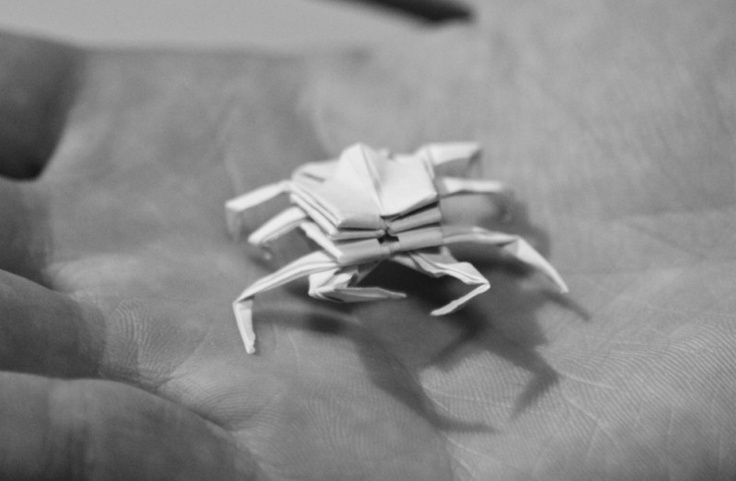 how to make origami crab 38 best images about papercraft on pinterest 2d paper to how origami make crab