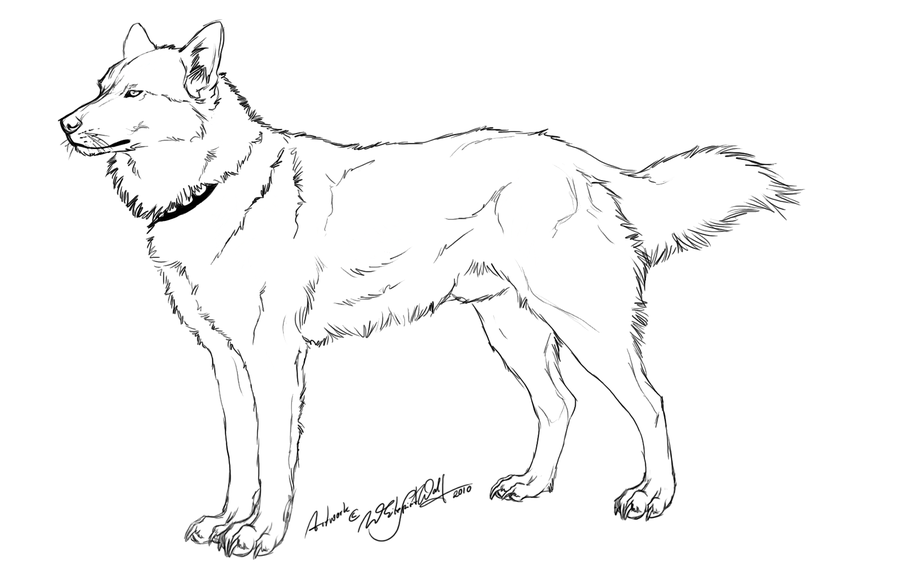 husky face coloring pages baby husky coloring coloring pages face husky pages coloring