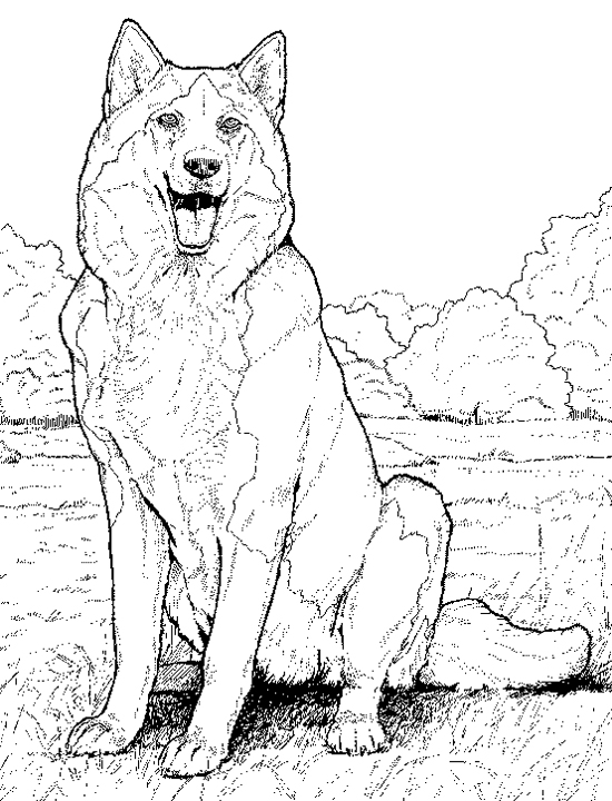 husky face coloring pages dog face mask templates simple mom project face coloring husky pages