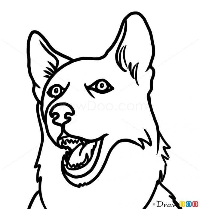 husky face coloring pages face realistic husky coloring pages 1 coloring pages pages husky face coloring