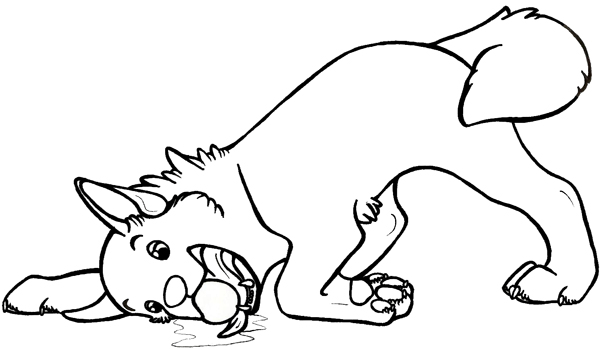 husky face coloring pages face realistic husky coloring pages puppy coloring pages coloring husky pages face