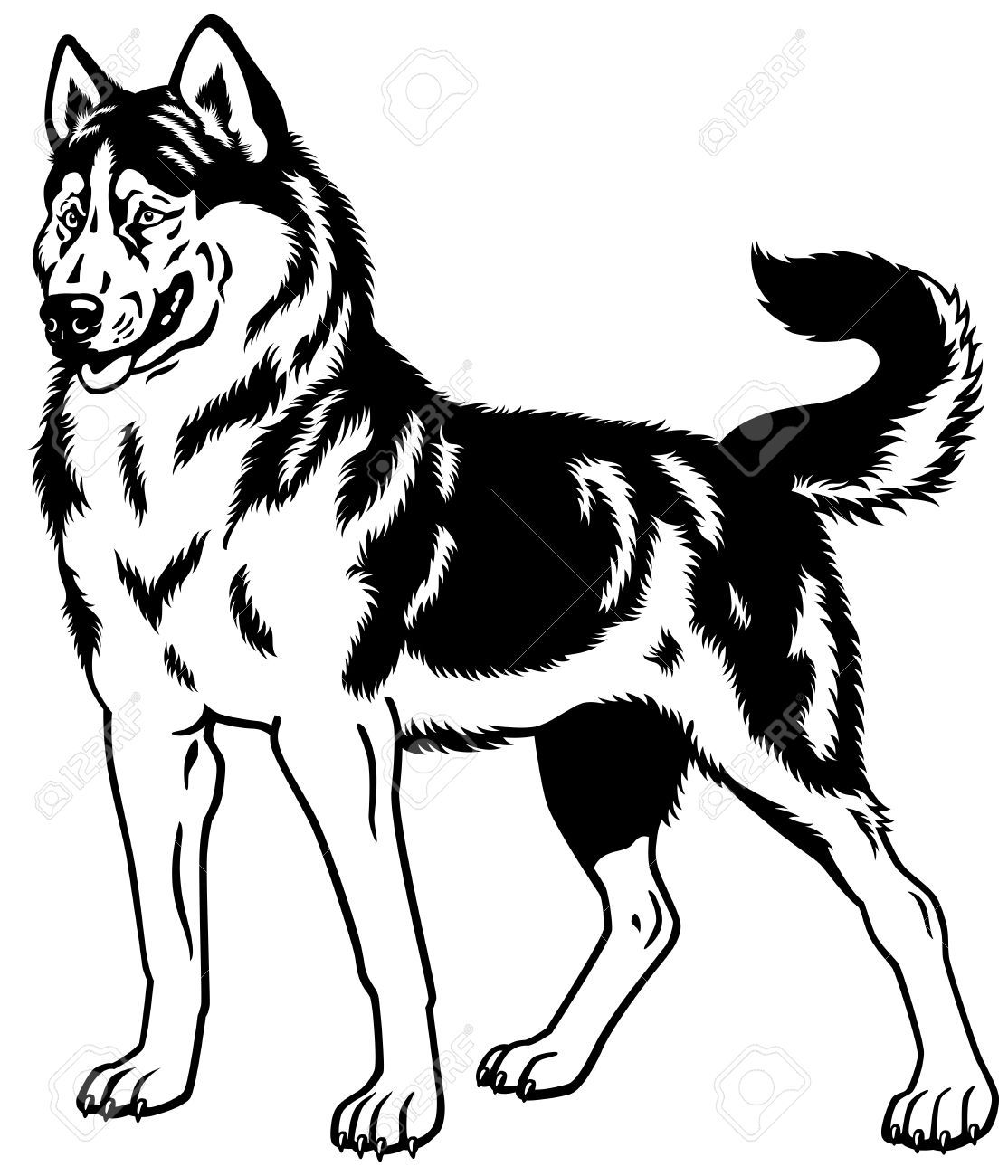 husky face coloring pages free cliparts husky puppy download free clip art free coloring face husky pages