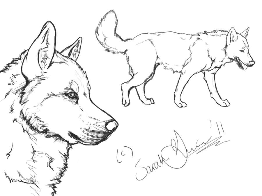 husky face coloring pages free dog face coloring page download free clip art free husky coloring face pages