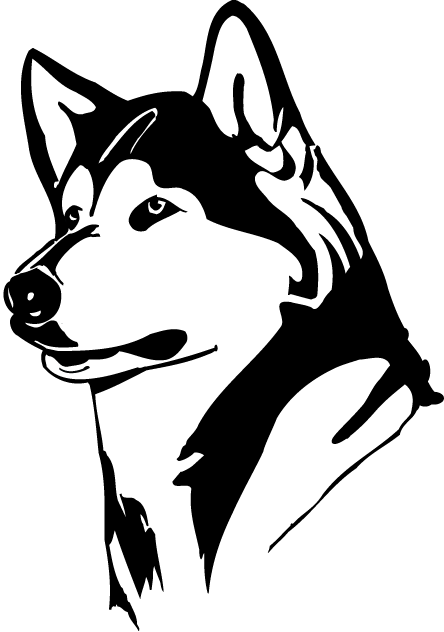 husky face coloring pages how to draw husky face dogs and puppies huski face husky coloring pages