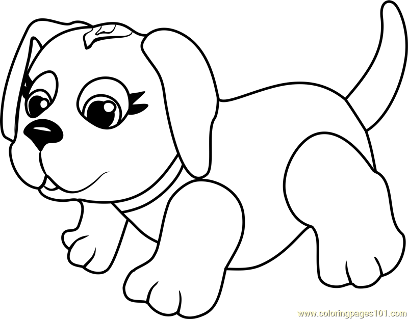 husky face coloring pages husky baby coloring page husky face pages coloring