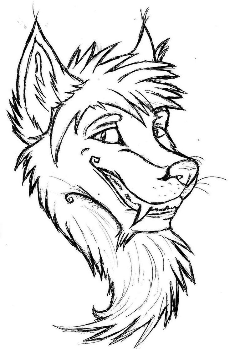 husky face coloring pages husky face coloring pages coloring pages husky face