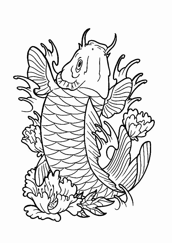 japanese koi fish coloring pages pin by murali loknath on betta fish coloring pages fish koi pages japanese fish coloring