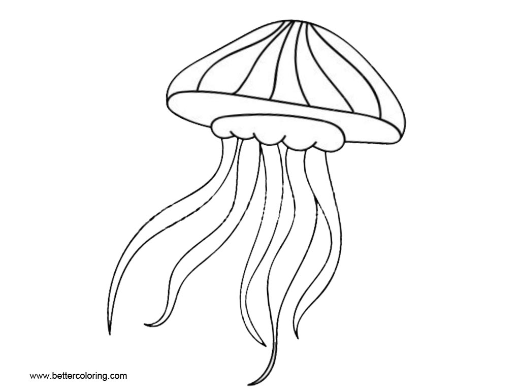 jellyfish drawing for kids jellyfish coloring pages easy drawing free printable kids for drawing jellyfish