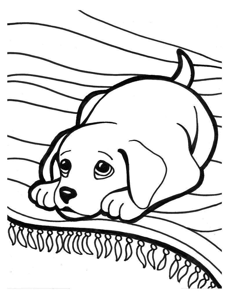 kids coloring puppy animals coloring pages cute puppy playing kids kids coloring puppy