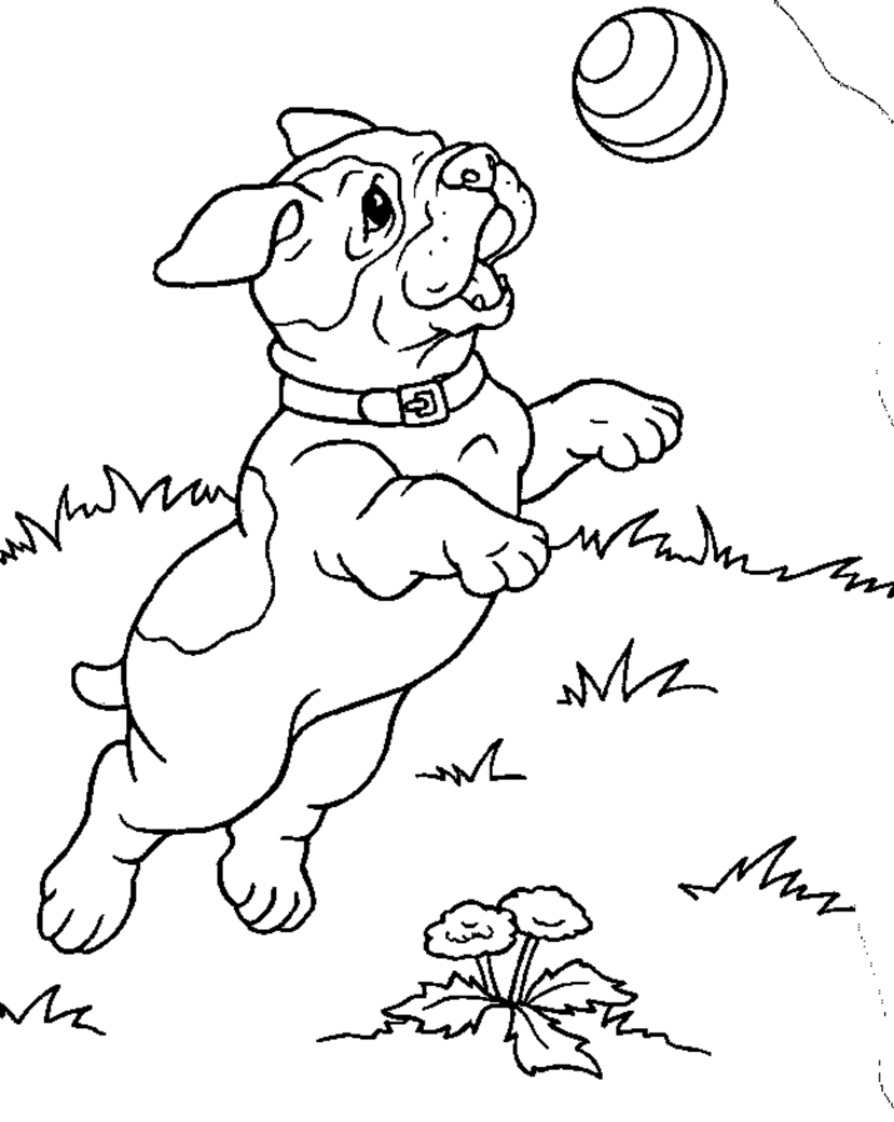 kids coloring puppy free printable dogs and puppies coloring pages for kids puppy coloring kids