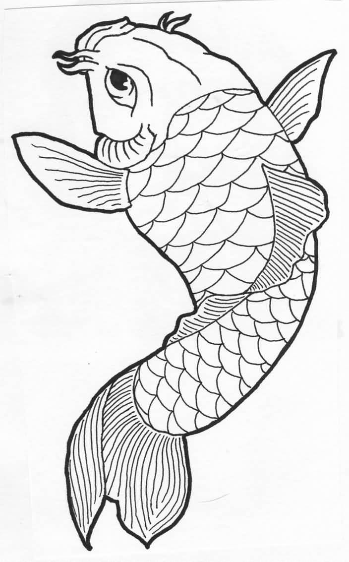 koi carp drawing learn how to draw koi fish with this easy step by step guide drawing koi carp