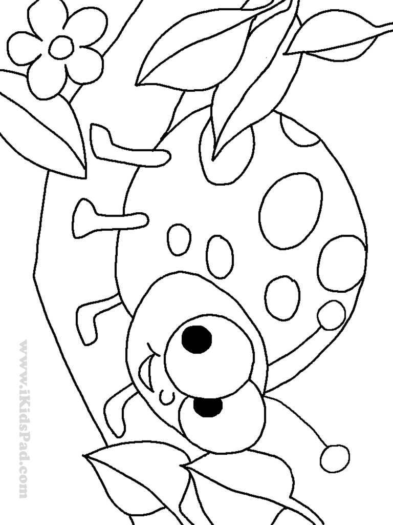 ladybug for coloring lady bug free colouring pages ladybug coloring for