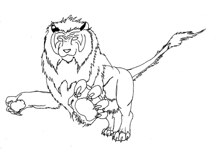 liger coloring pages 43 best images about places to visit on pinterest tiger liger pages coloring