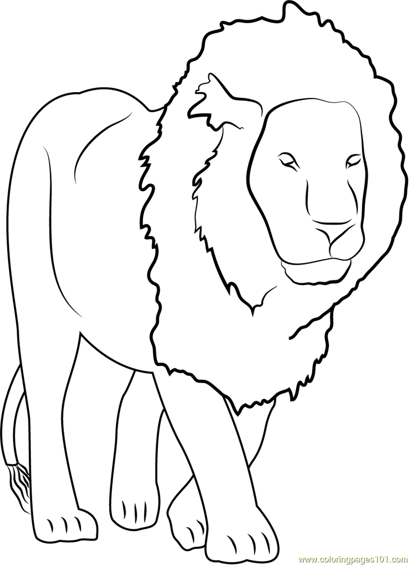 lion coloring image lion to print for free lion kids coloring pages coloring image lion