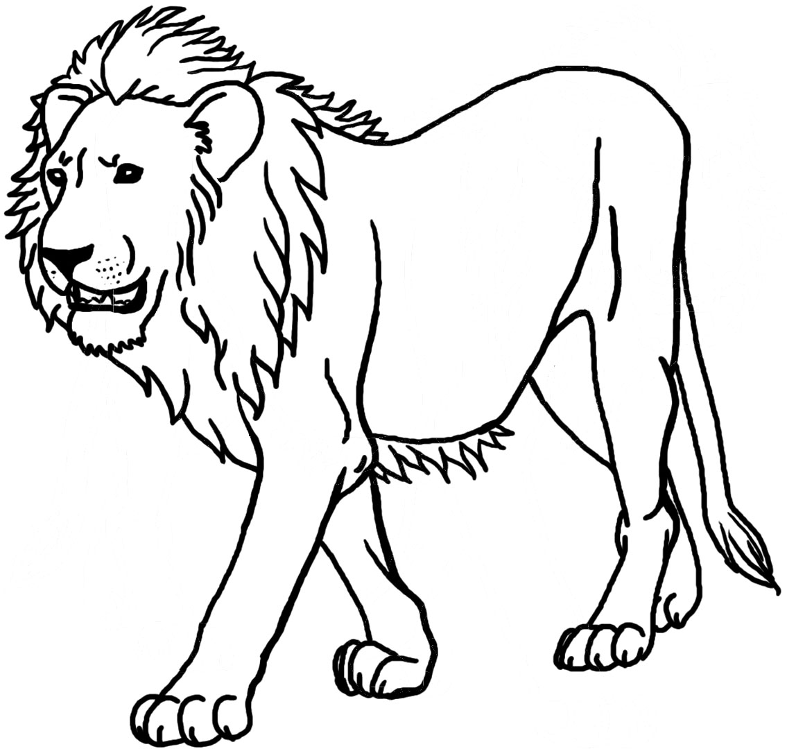 lion coloring image north african lion coloring cswd coloring lion image