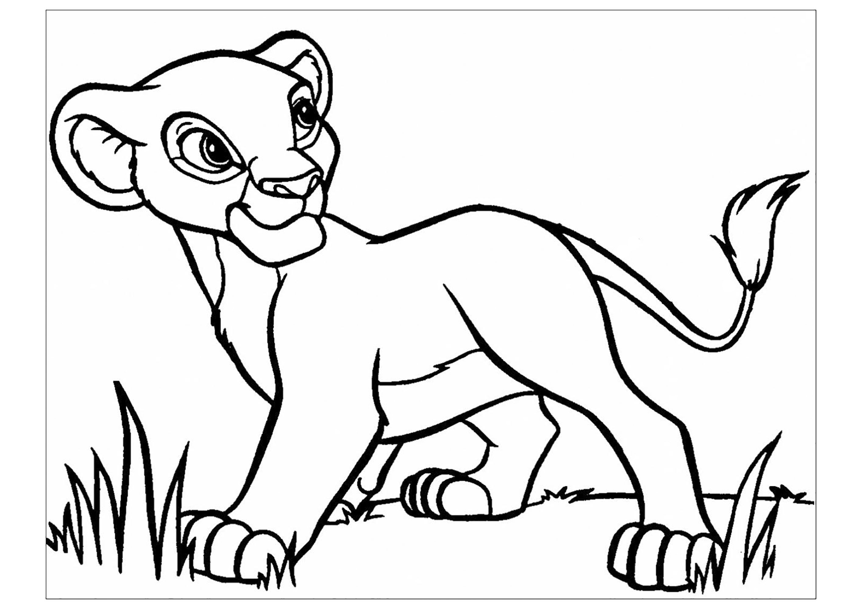 lion king easy coloring pages the lion king coloring pages download and print the lion easy king coloring lion pages