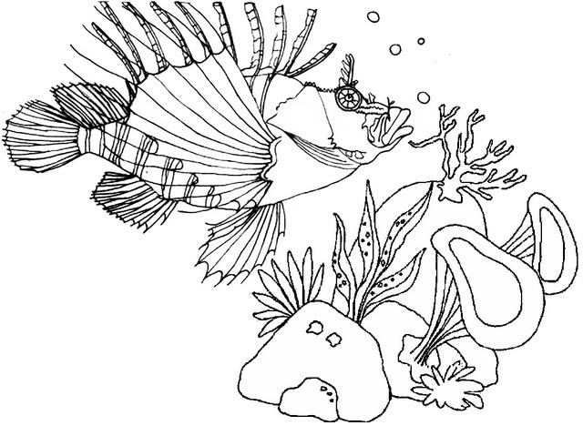 lionfish coloring page free lionfish coloring page download free clip art free page coloring lionfish