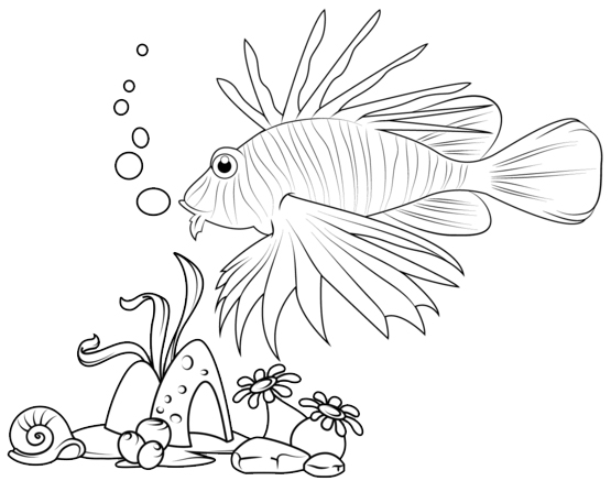 lionfish coloring page lionfish underwater coloring page of fauna lionfish coloring page