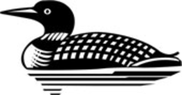 loon pictures printable items similar to print pen ink loon and young loon printable pictures
