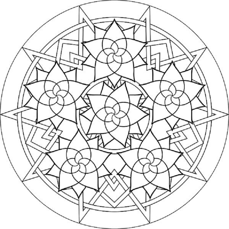 luther rose coloring page luther rose coloring pages printable shelter rose luther rose coloring page