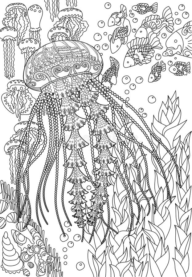 mandala jellyfish coloring page related image with images jellyfish drawing drawings jellyfish mandala page coloring